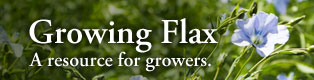 feature-1-growing-flax