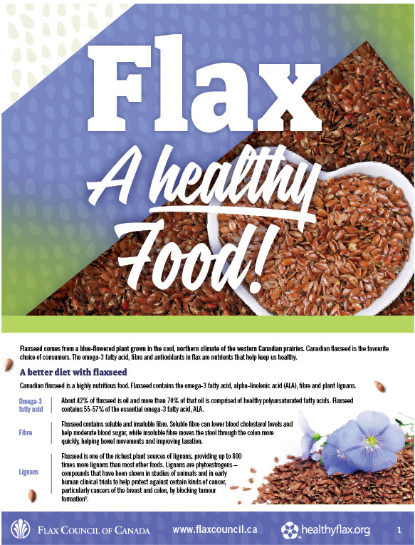 Flax - A Healthy Food Brochure